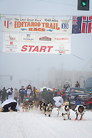 Michelle Phillips and team leave the ceremonial start line at 4th Avenue and D street in downtown Anchorage during the 2013 Iditarod race. Photo by Jim R. Kohl/IditarodPhotos.com
