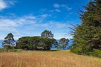 Condominium One, overlooking Pacific Ocean at The Sea Ranch with evergreen trees for landscaping