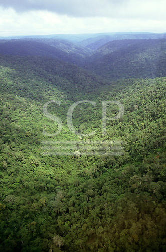 View over mountainous rainforest; border between Brazil Guyana.