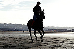 August 14, 2021, Deauville (France) - Horse training at the beach in Deauville. [Copyright (c) Sandra Scherning/Eclipse Sportswire)]