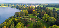 BNPS.co.uk (01202 558833)<br /> Pic: BNPS<br /> <br /> Blenheim harbours the largest gathering of ancient oaks in Europe.<br /> <br /> A herd of British white cattle is being returned to help manage ancient woodland on the Blenheim Estate.<br /> <br /> Some 45 cattle, including 21 cows, 23 calves and Sebastian the bull, have been released into High Park, a wooded area of the Oxfordshire estate that was originally created by King Henry I as a deer park in the 12th century. <br /> <br /> It is the first time the woods have been grazed by livestock for more than a century and it is hoped their re-introduction will encourage new tree growth.