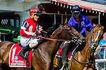 SARATOGA SPRINGS - AUGUST 27: Birdatthewire #1, ridden by Junior Alvarado, during the post parade before the the Ballerina Stakes on Travers Stakes Day at Saratoga Race Course on August 27, 2016 in Saratoga Springs, New York. (Photo by Dan Heary/Eclipse Sportswire/Getty Images)