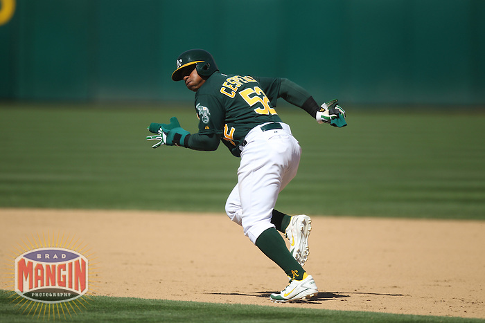 OAKLAND, CA - MAY 1:  Yoenis Cespedes #52 of the Oakland Athletics runs the bases during the game against the Los Angeles Angels at O.co Coliseum on May 1, 2013 in Oakland, California. Photo by Brad Mangin