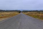 Road to Kellog Beach, Lake Earl Wildlife Area north of Crescent City California, near the Oregon and California border.