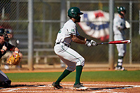 Dartmouth Big Green Blake Crossing (13) bats during a game against the Omaha Mavericks on February 23, 2020 at North Charlotte Regional Park in Port Charlotte, Florida.  Dartmouth defeated Omaha 8-1.  (Mike Janes/Four Seam Images)