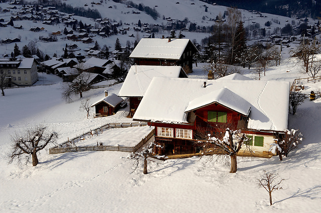 Swiss chalets in Grindelwald - Swiss Alps - Switzerland