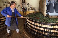 Europe/France/Champagne-Ardenne/51/Marne/Cramant: Vendange MUMM - Pressoir [Non destiné à un usage publicitaire - Not intended for an advertising use]