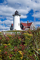 Nobska Point Light, Woods Hole, Cape Cod, MA, Massachusetts,, USA