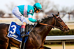 JANUARY 01, 2019 :Mind Control, ridden by John Velazquez, wins the Jerome Stakes for 3-year olds at Aqueduct Racetrack on January 01, 2019 in S. Ozone Park, NY.  Sue Kawczynski/ESW/CSM
