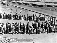 This assembly center has been open for two days.  Only one mess hall was operating today.  Photograph shows line-up of newly arrived evacuees outside this mess hall at noon.  Tanforan Assembly Center, San Bruno, CA. April 29, 1942.  Dorothea Lange. (WRA)<br /> NARA FILE #:  210-G-3C-334<br /> WAR & CONFLICT #:  784
