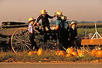 Amish boys with pumpkins and wagon. Amish boys. Strasburg Pennsylvania USA Lancaster County.