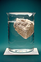 PUMICE FLOATING IN A BEAKER OF WATER<br /> Its Cavities Are Formed By Gas Bubbles In Magma<br /> Pumice with a specific gravity of 3 should sink in water which has a specific gravity of 1, but because it is honeycombed with vesicles it floats.
