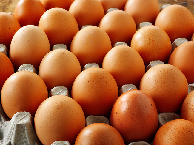 Fresh brown free renge eggs
