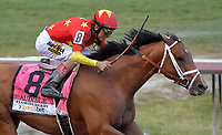HALLANDALE, FL - MARCH 31: Audible ran away in the stretch to win the Grade 1 Florida Derby with Jockey John Velazquez. It marks the fifth Florida Derby win for trainer Todd Pletcher, who won both the Florida and Kentucky Derbies last year with Always Dreaming at Gulfstream Park on March 31, 2018 in Hallandale, Florida <br /> <br /> People:  Audible, John Velazquez