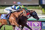 OCT 4,2014:Rich Tapestry(suddle number 2),ridden by Oliver Doleuze,wins Santa Anita Sprint Championship at Santa Anita Park in Arcadia,CA. Kazushi Ishida/ESW/CSM