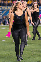 Members of the Pitt Panther dance team perform. The Virginia Tech Hokies defeated the Pitt Panthers 39-36 on October 27, 2016 at Heinz Field in Pittsburgh, Pennsylvania.