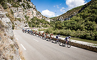 peloton through the Gorges<br /> <br /> Stage 5 from Gap to Privas (183km)<br /> <br /> 107th Tour de France 2020 (2.UWT)<br /> (the 'postponed edition' held in september)<br /> <br /> ©kramon