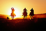 Silhouette of three cowboys running with a cowdog at sunset in Oregon