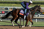 ARCADIA, CA  OCTOBER 30:  Breeders' Cup Filly & Mare Turf entrant Thais, trained by Chad C. Brown,  exercises in preparation for the Breeders' Cup World Championships at Santa Anita Park in Arcadia, California on October 30, 2019.  (Photo by Casey Phillips/Eclipse Sportswire/CSM)
