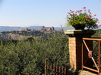 View of Umbrian hill town from the Wine estate of Le Velette, Orvieto, Ital