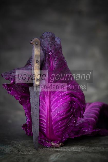 Gastronomie Générale/ Agriculture Biologique/ Chou Rouge //  General Gastronomy / Organic Agriculture / Red Cabbage