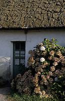 Europe/France/Pays de la Loire/44/Loire-Atlantique/Grande Brière et Marais de Donges et du Brivet/Ile de Fedrun : Maison du parc
