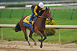 25 April 2010: Bob Baffert's Lookin at Lucky breezed five furlongs in 1:00.08 with exercise rider Dana Barnes up on Monday at Churchill Downs in Louisville, Kentucky.