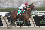 11 27 2010: To Honor and Serve with John Velazquezup win the 97th running of the Grade II Remsen for 2-year olds, at 1 1/8 miles, Aqueduct Racetrack, Jamaica, NY. Trainer William Mott. Owners Live Oak Plantation.