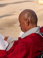 Mönch bei Feier zu Buddha's Geburtstag, Andong, Provinz Gyeongsangbuk-do, Südkorea, Asien