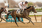 November 28, 2015: Lewis Bay with Irad Ortiz Jr. the Grade II Demoiselle Stakes for 2-year old fillies, going 1 1/8 mile at Belmont Park.  Trainer Chad Brown. Owner Alpha Delta Stables . Sue Kawczynski/ESW/CSM