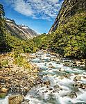 The Hollyford River / Whakatipu Kā Tuka in the Fiordlands National Park, New Zealand
