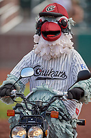 "Idaho Falls Chukars mascot ""Charlie the Chukar"" between innings of a game against the Orem Owlz at Melaleuca Field on July 14, 2019 in Idaho Falls, Idaho. The Owlz defeated the Chukars 6-2. (Stephen Smith/Four Seam Images)"