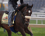 Preakness contender Mr. Commons gallops on Thursday morning, May 19, 2011, at Pimlico Race Course in Baltimore, MD. (Joan Fairman Kanes/EclipseSportswire)