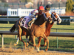 Seaneen Girl and Miguel Mena win the 9th race, The Golden Rod Grade 2 $150,000 at Churchill Downs.  November 24, 2012.