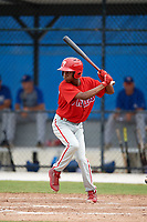 Philadelphia Phillies Julio Francisco (17) at bat during an Instructional League game against the Toronto Blue Jays on October 7, 2017 at the Englebert Complex in Dunedin, Florida.  (Mike Janes/Four Seam Images)