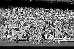 The All Blacks Sevens beat Australia 24-10. London, England. Photo: Marc Weakley