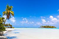 White sand beach and coconut palm trees, with a paradisiac motu in the turquoise lagoon of Rangiroa atoll, Tuamotus archipelago, French Polynesia