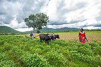 Lexina & Victoria plowing field_Kachamba