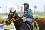 June 28, 2014:  Wildcat Red (FL) with jockey Luis Saez on board wins the Quality Road Stakes at Gulfstream Park in Hallandale Beach FL. Liz Lamont/ESW/CSM