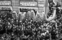 Milano, festeggiamenti per il Capodanno cinese in via Paolo Sarpi. Dragone --- Milan, Chinese New Year celebrations in Paolo Sarpi street. Dragoon