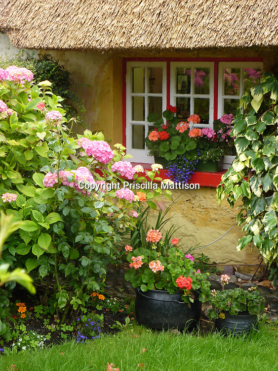 Adare, Republic of Ireland - July 18, 2010:  The window of a thatched-roof cottage is surrounded by plants.