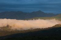 Evening fog near Ridgway.<br /> <br /> Canon EOS 5D, 70-200 f/2.8L lens