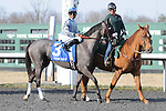 March 21, 2015: Don't Leave Me and jockey Jose Lezcano win the Pure Romance Bourbonette Oaks at Turfway Park for owner Pin Oak Stud and trainer Malcolm Pierce.