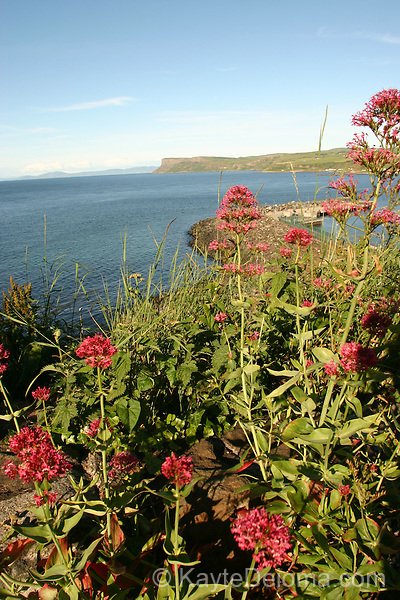 View from North Street, Ballycastle across Ballycastle Bay to Fair Head, County Antrim, Northern Ireland