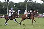 April 20, 2014: April 20, 2014: Alegria (Julian Mannix, Hilario Ulloa, Mariano Aguerre, Clemente) wins the US Open Polo Championship over Valiente (Bob Jornayvaz, Santi Torres, Sapo Caset, Juan Martin Nero)11-10,  at the International Polo Club, Palm Beach in Wellington, FL. Liz Lamont/ESW/CSM