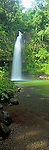 Bouma Falls in Taveuni, Fiji Islands<br /> <br /> Image taken on large format panoramic 6cm x 17cm transparency. Available for licencing and printing. email us at contact@widescenes.com for pricing.