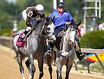 May 19, 2012 Bandbox, Abel Castellano Jr. up, takes part in the post parade before finishing second in the 26th running of the Grade III Maryland Sprint Handicap at Pimlico Race Course in Baltimore, Maryland. photo by Joan Fairman Kanes