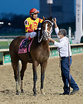 November 27, 2020: Bodexpress, trained by  Gustavo Delgado and ridden by Rafael Bejarano, wins the Clark Stakes (G1) at Churchill Downs in Louisville, Kentucky on November 27, 2020. Jessica Morgan/Eclipse Sportswire: