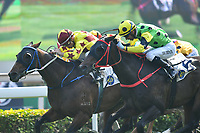 10 December 2017, Hong Kong - Umberto Rispoli on the Caspar Fownes trained SOUTHERN LEGEND on the inside wins in Race 3 - FLYING DANCER HANDICAP at Shatin Racecourse Hong Kong. Photo Sydney Low