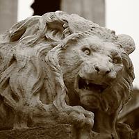 One of the sculpted lions of Saint Sulpice fontain in foreground. This is an enlargement of the original photo (Paris, 2010).<br /> <br /> Uno dei leoni scolpiti della fontana di Saint Sulpice in primo piano. Questo è un ingrandimento della foto originale (Parigi, 2010).